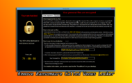 Beware Ransomware Called Venus Locker