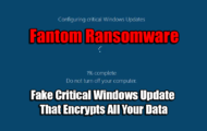 Fake Critical Windows Update That Encrypts All Your Data