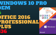 Windows 10 PRO OEM + Office 2016 Professional Plus Pack $36
