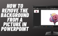 How to Remove the Background from a Picture in PowerPoint